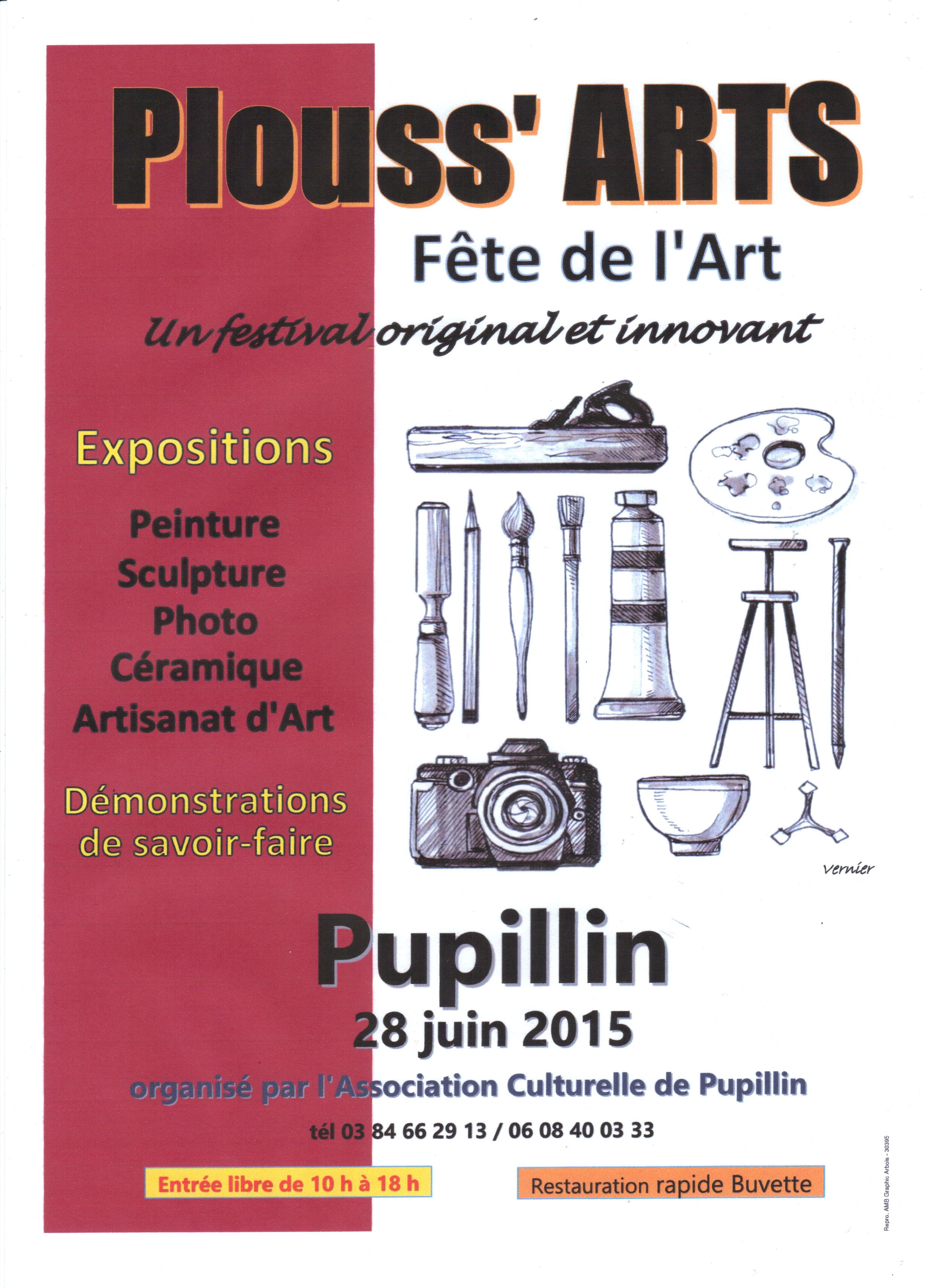 affiche Plouss'Arts 2015 002
